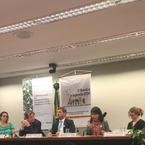 Grupo de Trabalho da Sociedade Civil sobre a Agenda 2030 e ODS realiza seminário e Audiência Pública na Câmara dosDeputados